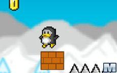 Penguins Pole